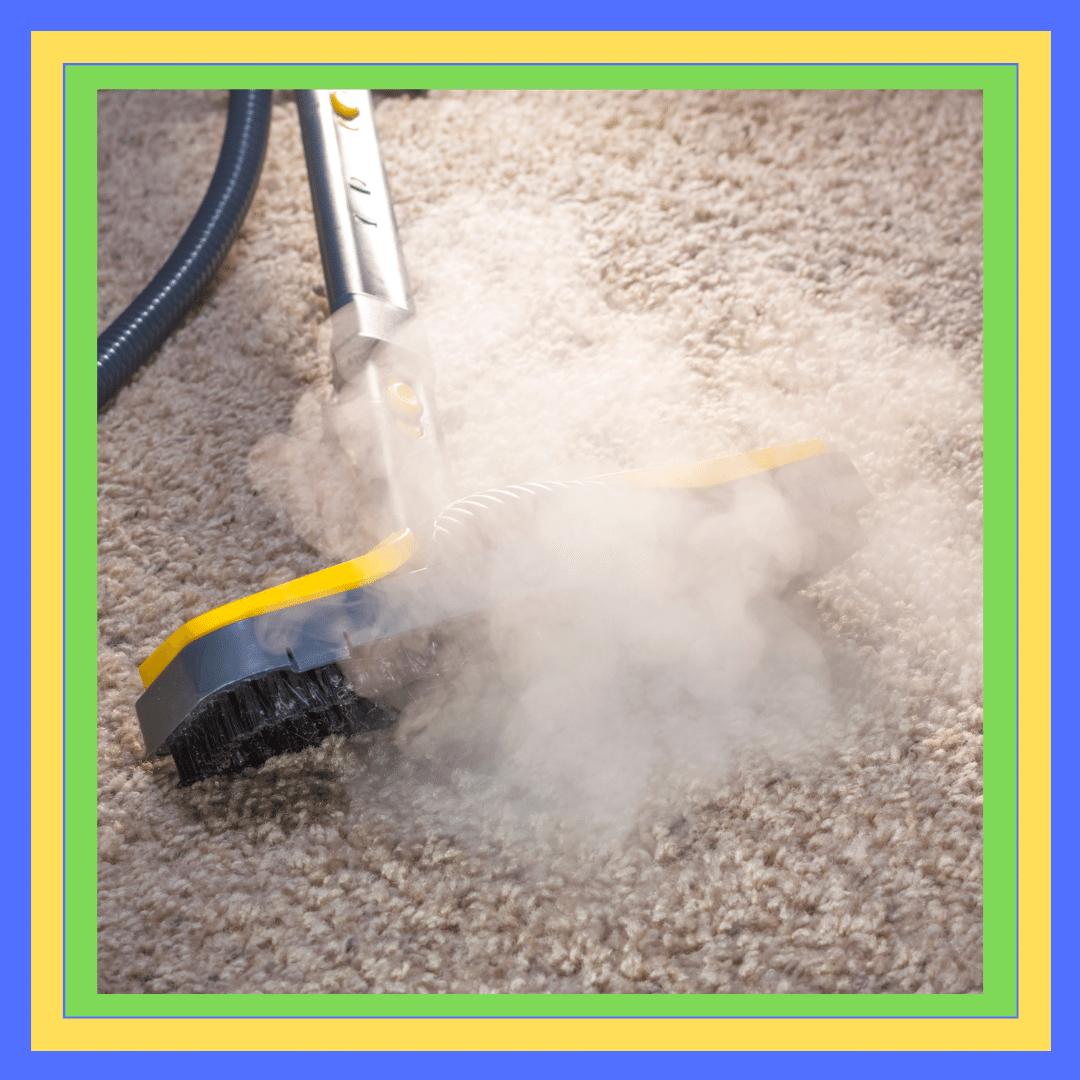 Carpet Steam Cleaning Rosebery